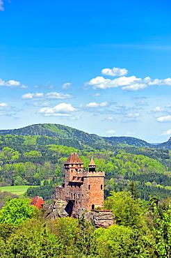 Burg Berwartstein castle, Erlenbach, Naturpark Pfaelzerwald nature reserve, Palatinate, Rhineland-Palatinate, Germany, Europe
