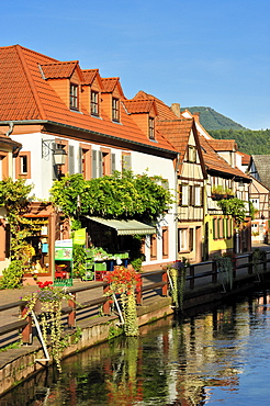 View of the Wassergasse lane with the river Queich, Annweiler, Naturpark Pfaelzerwald nature reserve, Palatinate, Rhineland-Palatinate, Germany, Europe