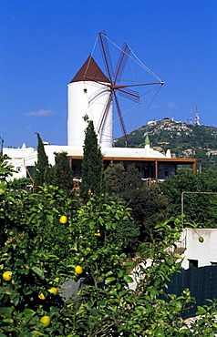 Windmill in Es Mercadal, Minorca, Balearic Islands, Spain
