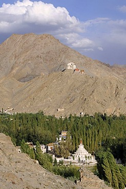 Leh oasis with Gonkhang monastery and castle ruins on the mountain, Ladakh, India, Himalayas, Asia