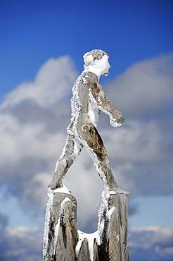 Wooden sculpture by the artist Mario Gasser on the Austrian part of Zugspitze Mountain, district of Reutte, Tyrol, Austria, Europe