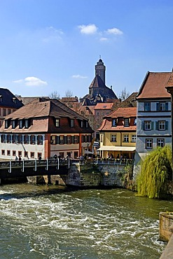 Old houses on Regnitz River, in front of Obere Pfarre Church, Bamberg, Upper Franconia, Bavaria, Germany, Europe