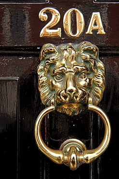 Door knocker, lion's head, Rye, county of Kent, England, Europe