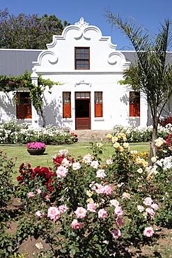 Manor house at Bon Cap Vineyard, Eilandia, Robertson, Western Cape, South Africa, Africa