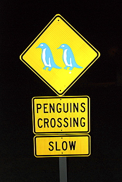Street sign, penguins crossing, South Island, New Zealand