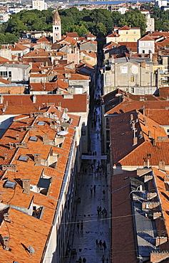 Aerial view of a street in Zadar, Dalmatia, Croatia, Europe