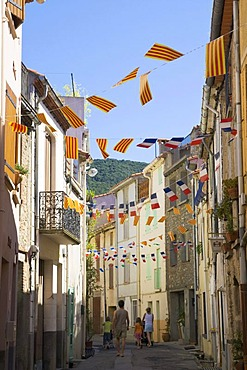 Street decorated with flags and pennants in French and Catalan colours for the French national holiday, Laroque des Alberes, Pyrenees-Orientales, Roussillon, Languedoc-Roussillon, South France, France