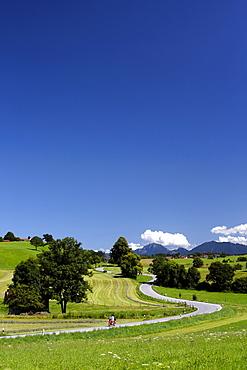 Road, scooter, motorcycle, landscape, summer, Riegsee lake, Murnau, Upper Bavaria, Bavaria, Germany, Europe