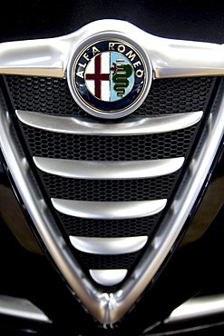 Alfa Romeo emblem on a car