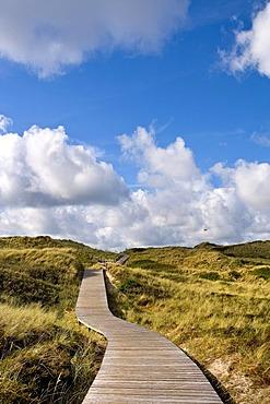 Wooden walkway leading through the dunes near Kampen, North Frisia, Schleswig-Holstein, Germany, Europe