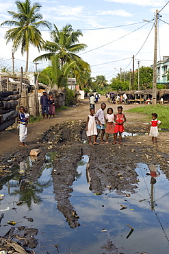Stagnant water, ideal breeding ground for mosquitoes transmitting malaria, center of Quelimane, Mozambique, Africa