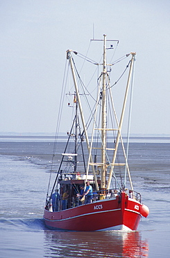 Fishing boat at Dornumersiel, fishery, North Sea, North Sea coast, Lower Saxony, Germany, Europe