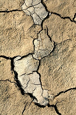 A dry river floor