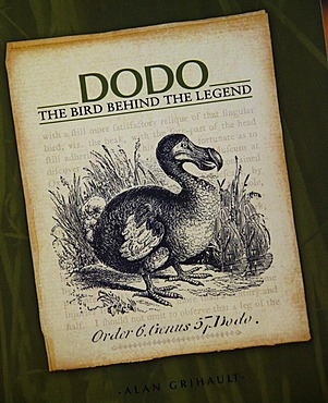 Souvenir, dodo, extinct National Bird, Caudan Waterfront in the harbour of the capital city Port Louis, Mauritius, Africa, Indian Ocean