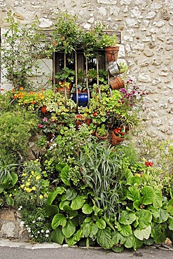 Flowers in front of window, Saint-Paul de Vence, Alpes-Maritimes, Provence-Alpes-Cote d'Azur, Southern France, France, Europe