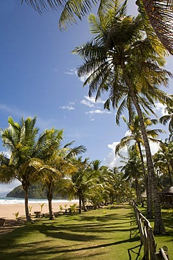 Playa Pui Pui Beach, holiday huts, Venezuela, Caribbean, South America