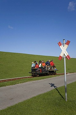 Holiday guests being driven from Luettmoorsiel to Hallig Nordstrandischmoor in a freight wagon, North Sea, Northern Frisia, Schleswig-Holstein, Germany, Europe