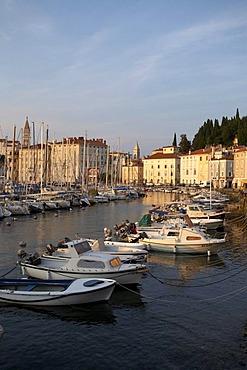 Boats in Piran Harbor, Istria, Slovenia, Europe
