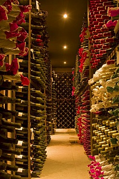 Wine cellar of the Cuvee du Vatican vineyard, Chateauneuf du Pape, Provence, France, Europe