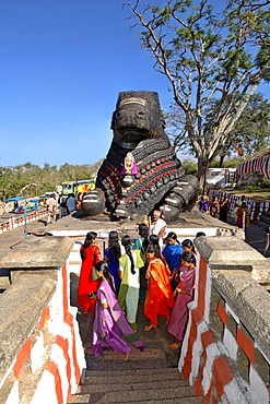 Nandi statue, Chamundi Hill, Mysore, Karnataka, India, South Asia