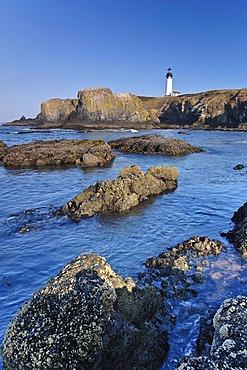 Yaquina Bay lighthouse, Newport, Lincoln County, Oregon, USA