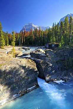 Waterfall at Mistaya Canyon, Banff National Park, Alberta, Canada, North America