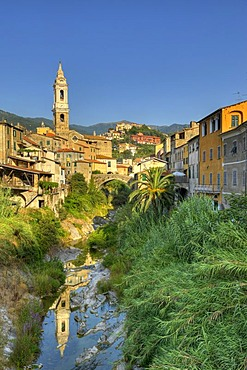 San Tomaso parish church in Dolcedo with the Ponte Grande Bridge over the Prino River, Riviera dei Fiori, Liguria, Italy, Europe