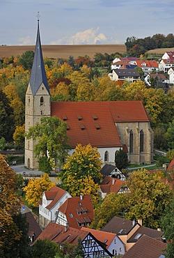 Alexander Church, Alexanderkirche, Marbach am Neckar, Baden-Wuerttemberg, Germany, Europe