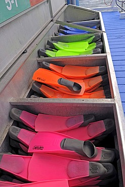 Flippers for divers and snorkellers at a diving station, Great Barrier Reef, Australia