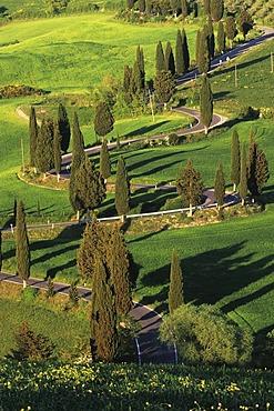 Winding road near Monticchiello, Tuscany, Italy, Europe