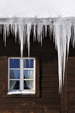 Icicles hanging from a roof gutter