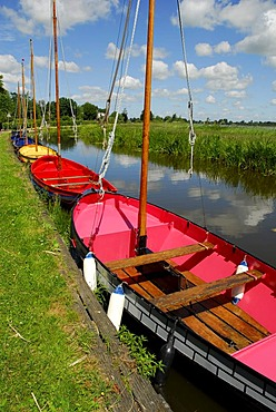 Colourful boats in the green landscape between Gouda, Bodegraven, Reeuwijk and Oudewater, Reeuwijkse Plassen, South-Holland, Zuid-Holland, Nederland, The Netherlands