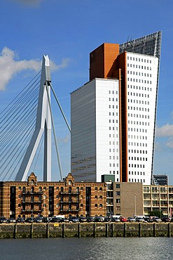 Modern architecture by the waterside: the Belvedere building of the telephone company KPN Telecom and to the left of it the Erasmusbrug bridge, Wilhelminapier, Wilhelminaplein, Rijnhaven, Rotterdam, South Holland, the Netherlands, Europe