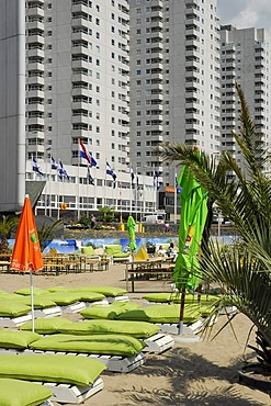 Beach with palm trees, Stichting Strand aan de Maas, Leuvehoofd, Boompjes, Rotterdam, South Holland, the Netherlands, Europe
