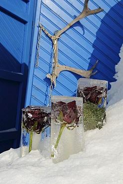Entry doors to the igloo-hotel with caribou-antlers, Snow Hotel, Kirkenes, Finnmark, Lapland, Norway, Scandinavia, Europe