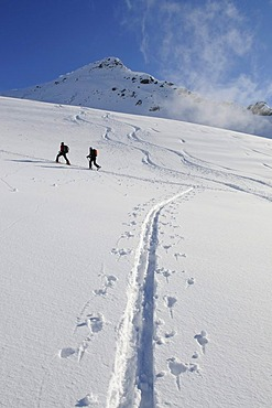 Ski hikers on a tour up Mount Brechhorn, Spertental Valley, Tyrol, Austria, Europe
