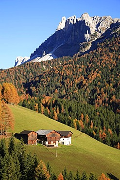 Passo delle Erbe, mountain pass at Funes Valley, Bolzano-Bozen, Italy, Europe