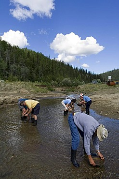 Men, gold panning on Gold Bottom Creek, Klondike gold rush, Dawson City, Yukon Territory, Canada, North America