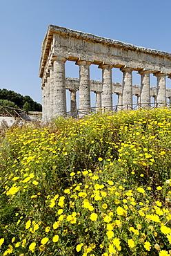 Temple Segesta Sicily Italy