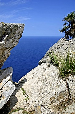 Cap Formentor, Majorca, Balearic Islands, Spain, Europe