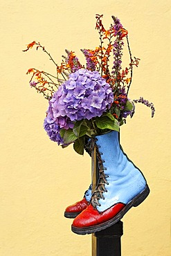 Inventive flower decoration, Dingle, Kerry, Ireland