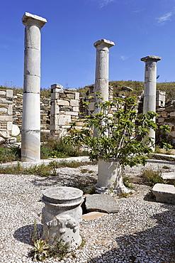 House of Inopos , Delos, Greece