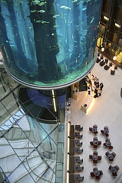 Aquadom in Berlin - Europe's largest free standing aquarium with a height of about 25 meters and a volume of 1 million litre of water. Inner court of Radisson hotel, Mitte, Berlin, Germany, Europe