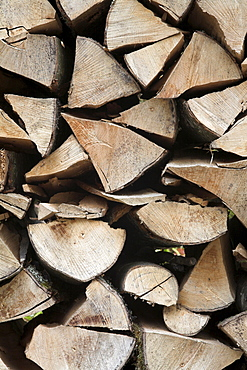 Split tree stumps in a pile, Eyachtal, Northern Black Forest, Baden-Wuerttemberg, Germany, Europe