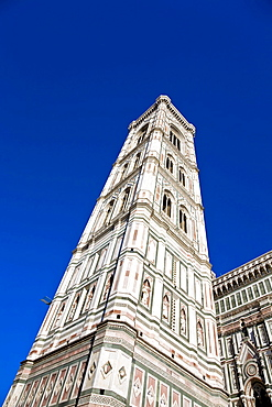 Giottos bell tower with the Santa Maria del Fiore Florence Tuscany Italy