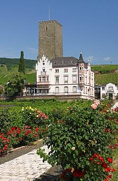 Boosenburg Castle, Ruedesheim, Hesse, Germany