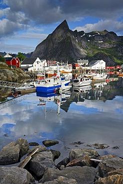 Fishing harbour, Reine, Moskenes, Lofoten, Norway, Scandinavia
