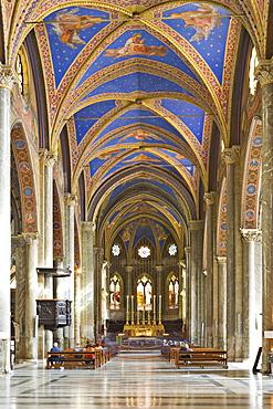 Interior view of Santa Maria sopra Minerva Church (Gothic church), Rome, Italy, Europe