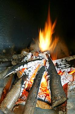 Burning logs of wood