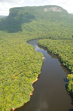 Aerial view of rainforest and tributary to Kaieteur Waterfalls, Guyana, South America